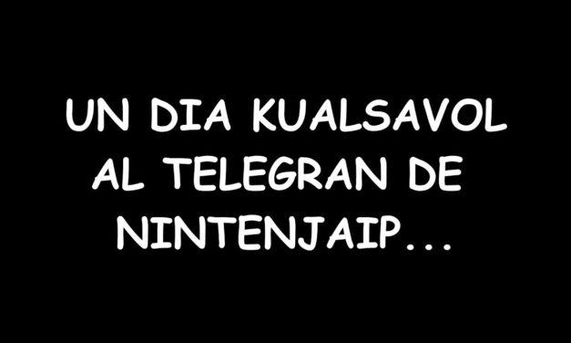 PITUHYPE – Un dia kualsavol al Telegran de Nintenjaip